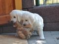 2011.07.09-Portee-Briny-Smirre-1_1