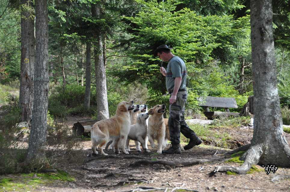 Photos-sorite-lac-de-Pierre-Percee-06.04.2011-20