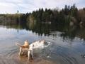 Photos-sorite-lac-de-Pierre-Percee-06.04.2011-18