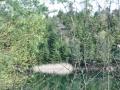 Photos-sorite-lac-de-Pierre-Percee-06.04.2011-9